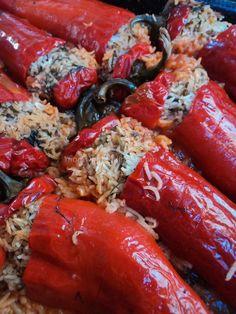 Stuffed Peppers Speca të Mbushura