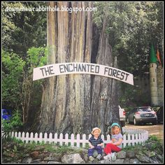 """This is a great family-friendly day trip: the Enchanted Forest in British Columbia, Canada. Find out more at """"Down the Wrabbit Hole - The Travel Bucket List"""". Click the image for the blog post."""