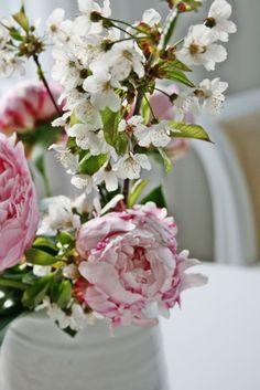 ╭⊰✿ Pretty In Pink ~ Vibeke Design