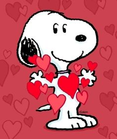 by Florynda del Sol ღ☀¨✿ ¸.ღ ♡♥♡Happy Valentine's day! Charlie Brown Und Snoopy, Charlie Brown Quotes, Charlie Brown Valentine, Images Snoopy, Snoopy Pictures, Peanuts Cartoon, Peanuts Snoopy, Valentines Day Drawing, Happy Valentines Day