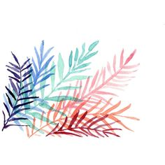 CIJ Sale Colorful Ferns a Print of original, Abstract, watercolor... ❤ liked on Polyvore