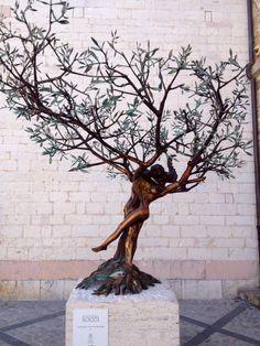 L'albero della vita.