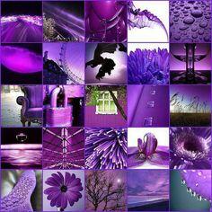 Purple Moodboard