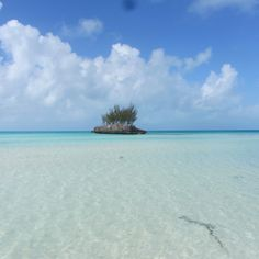 Another picture of my sisters mini break to the island Eluthera