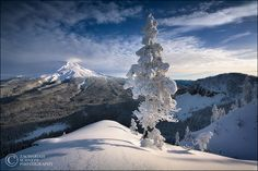 Mount Hood Winter by Zack Schnepf