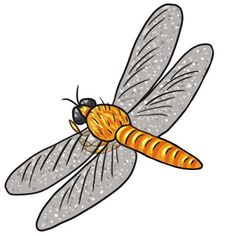 cartoon dragonfly clipart best bee s and dragon flies rh pinterest com dragonfly clipart images dragonfly cute clipart