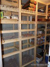 Build Walk In Cold Room - DIY Cold storage Room. How to build Wooden Vegetable bins in cold storage room. Wire Mesh Vegetables bins and storage shelves. Cold room idea for USA house basement. Food Storage Rooms, Food Storage Organization, Pantry Storage, Storage Bins, Diy Storage, Storage Ideas, Shelving Ideas, Pantry Labels, Organizing
