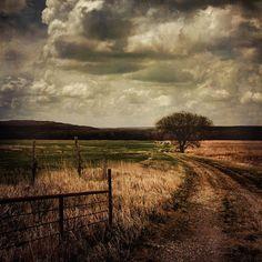 Country scene ~ bt Wayne Greer