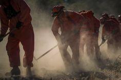 In Californië zijn duizenden brandweerlieden ingezet.