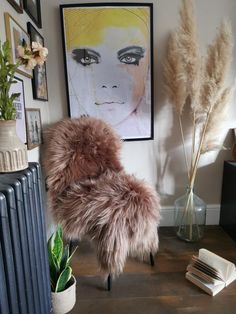 1 available Tiff is a large caramel colour Icelandic sheepie Blue Interiors, Hills And Valleys, Sheepskin Rug, Caramel Color, Dried Flowers, Biodegradable Products, Iceland, Interior Inspiration, Home Accessories