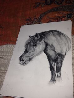 A portrait I'm doing for a friend who's pony was PTS not long ago, hope it does her justice!