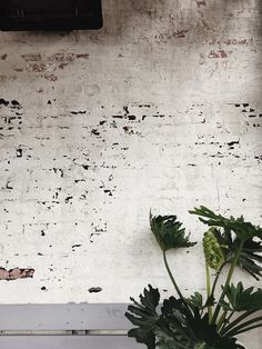 Photo by Jesse Bowser on Unsplash Metal Industrial, Industrial Interiors, Industrial House, Industrial Lighting, Industrial Furniture, Industrial Design, Industrial Farmhouse, Industrial Restaurant, Industrial Shelving