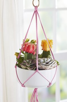Treat your potted plants to a simple knotted sling that's a blast from the macramé past.