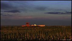 La Chine : nouvel eldorado et superpuissance du vin - partie 1