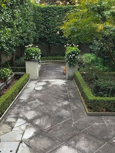 Inspiring Garden Design: Rooms with a View - Private Newport