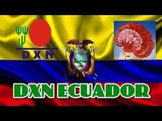 DXN Ecuador 2014 Un Mundo Un Mercado - Café Saludable con Ganoderma