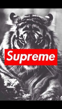 Supreme on Pinterest