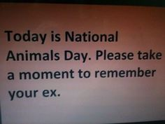 National Animals Day!