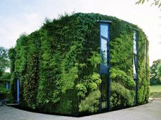 Now this is going green...the green vertical garden workspace/house in Linkebeek, Belgium created by Samyn & Partners and Patrick Blanc