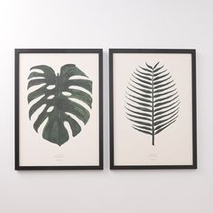 Shop the original botanical and flora posters and graphic art prints by By Garmi. Unique, modern and Scandinavian-style posters for every room your home. Unikke plakater fra By Garmi White Wall Art, Large Wall Art, Framed Art, Leaf Prints, Wall Art Prints, Framed Leaves, Lion King Art, Matching Paint Colors, Paint Stripes