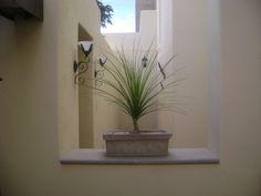 Macetas   Diseño de Jardines en Aguascalientes, vivero y centro macetero, todo en Deco Garden - Part 4