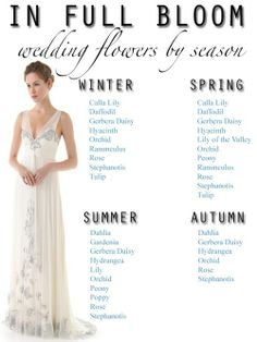 A helpful guide to show you what flowers are in full bloom in what season!