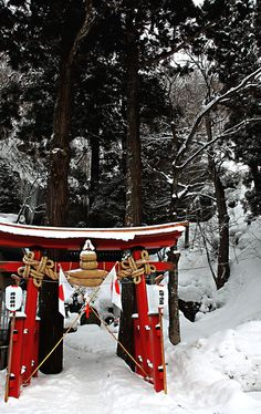Torii gate in snow, Japan