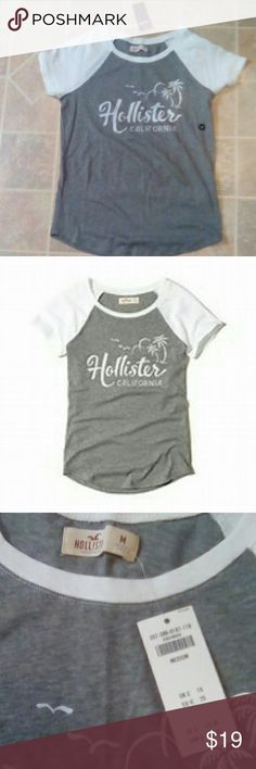 Hollister shirt Super cute soft fabric colorblock Hollister logo graphic t shirt. Asking what I paid for it :) Hollister Tops Tees - Short Sleeve