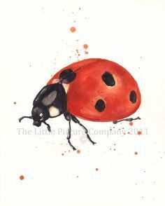 Watercolour Ladybird - How To draw!