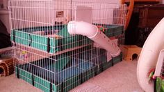 How to make two midwest cages plus a two story g pig cage by using pvc pipe and coroplast to cover the access door space