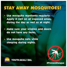 Dengue fever is a disease transmitted by a mosquito bite.  So, follow the prevention tips, construct a mosquito-free area and prevent dengue. ‪#‎Dengue‬ ‪#‎fever‬ ‪#‎Mosquitoes‬ ‪#‎rains‬ ‪#‎BeProtected‬ ‪#‎cleanliness‬ ‪#‎StaySafe‬ ‪#‎PreventDengue‬ ‪#‎YAD