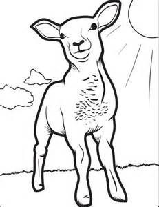 Realistic Lamb Coloring Pages
