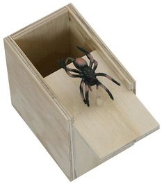 Surprise Spider Scare Box