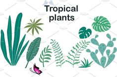 Plus size girls and tropical plants. #Sponsored , #sponsored, #swimsuits#summer#positive#Body<br>