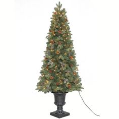 home accents holiday 65 ft greenland potted artificial christmas tree with 250 clear lights
