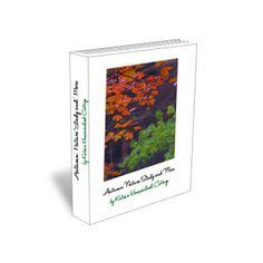 Autumn Nature Studies