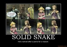 Google Image Result for http://www.demotivationalposters.org/image/demotivational-poster/0806/solid-snake-snake-zelda-peach-ssbb-sex-lesbians-videogames-demotivational-poster-1212304418.png