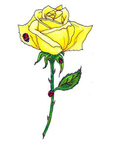 Small Yellow Rose Tattoo But I Would Personally Do Red It S Still