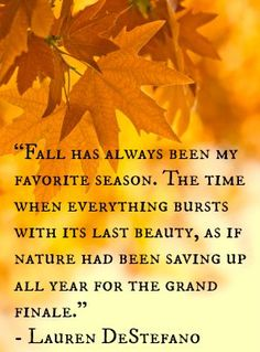Fall has always been my favorite season. The time when everything bursts with its last beauty. as if nature had been saving up all year for the grand finale. -Lauren DeStefano | Via Babble