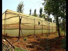 Low cost greenhouse farming - http://www.eightynine10studios.com/low-cost-greenhouse-farming/