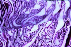 Purple Martian Brain
