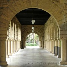 Classic architectural detail photography in near black & white or natural color (second photo) -- your choice at checkout. Detailed stonemasonry arches, columns topped with hearts, long pendulum lights and palm trees that beckon from the end -- found on the Stanford University campus.