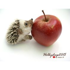 Needle felted hedgehog Miniature soft sculpture by Hobbyshop2015 ($26) found on Polyvore