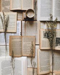 Open Book Book wallpaper Book aesthetic Book photography