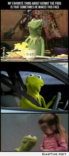Best Part of Kermit the Frog