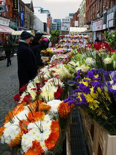 Flowers in Henry Street, Dublin, Ireland