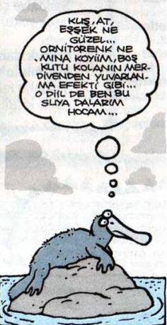 Platon bir gün bir ornitorent le bara girmiş ya, işte o ornitorenk bu ornitorenk. Nasıl içtiyse artık.