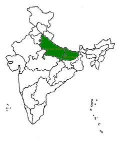 Speaking of population, the shaded green area on this map contains the same population as the entire United States. 13 Fascinating Maps That'll Change The Way You See India India World Map, India Map, Economic Geography, Geography Map, Warriors Wallpaper, Interactive Map, Fun Facts, Maps, Change