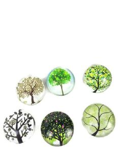 Tree of Life Snaps (6)