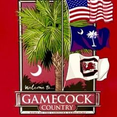 South Carolina Is Gamecock Country Gamecock Nation, Gamecocks Football, University Of South Carolina, South Carolina Gamecocks, Carolina Football, Charleston Style, Painted Canvas, Alma Mater, Simply Southern